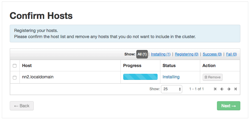 adding new host HDP installation progress
