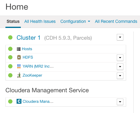 verify recommission and exit maintenance from Cloudera manager CCA 131