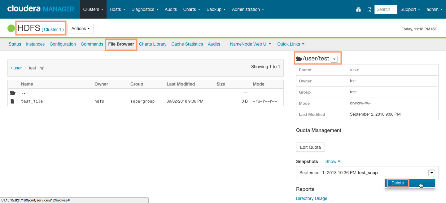 delete HDFS snapshot from Cloudera Manager CCA 131