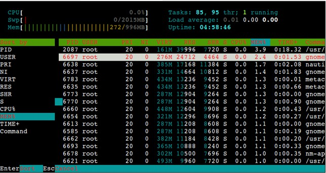 Display the processes sorted by different options using htop