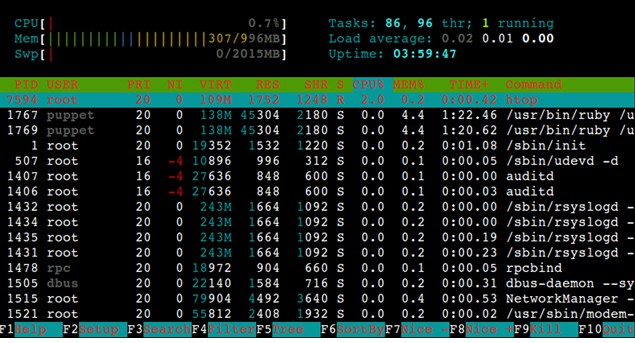 htop examples in Linux
